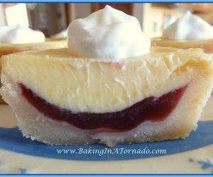 Lemon Raspberry Mini Pies
