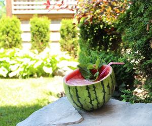 Coconut Watermelon Sensation