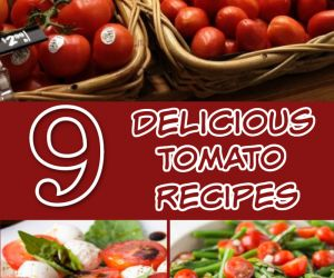 9 DELICIOUS RECIPES WITH TOMATOES